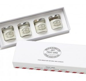 Fruit Gins Miniature Candle Set 0